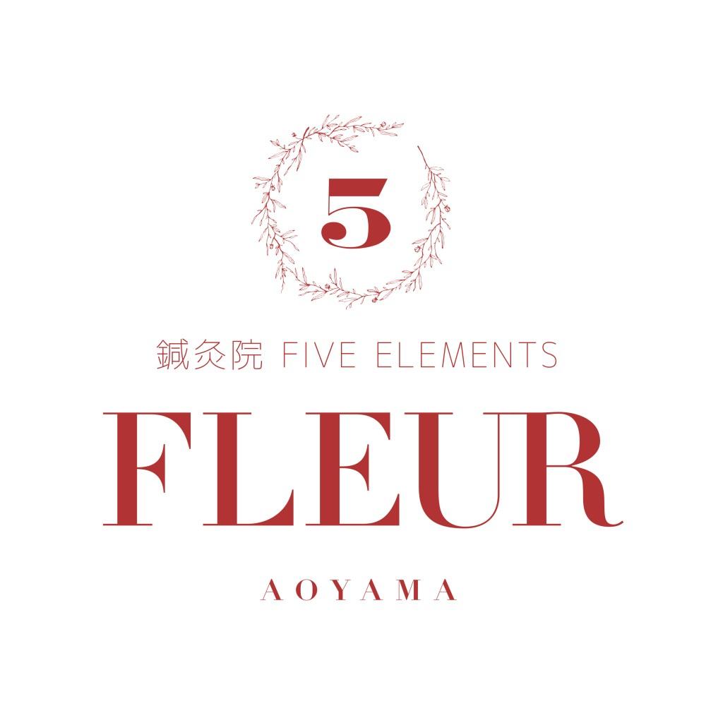 FE_aoyama
